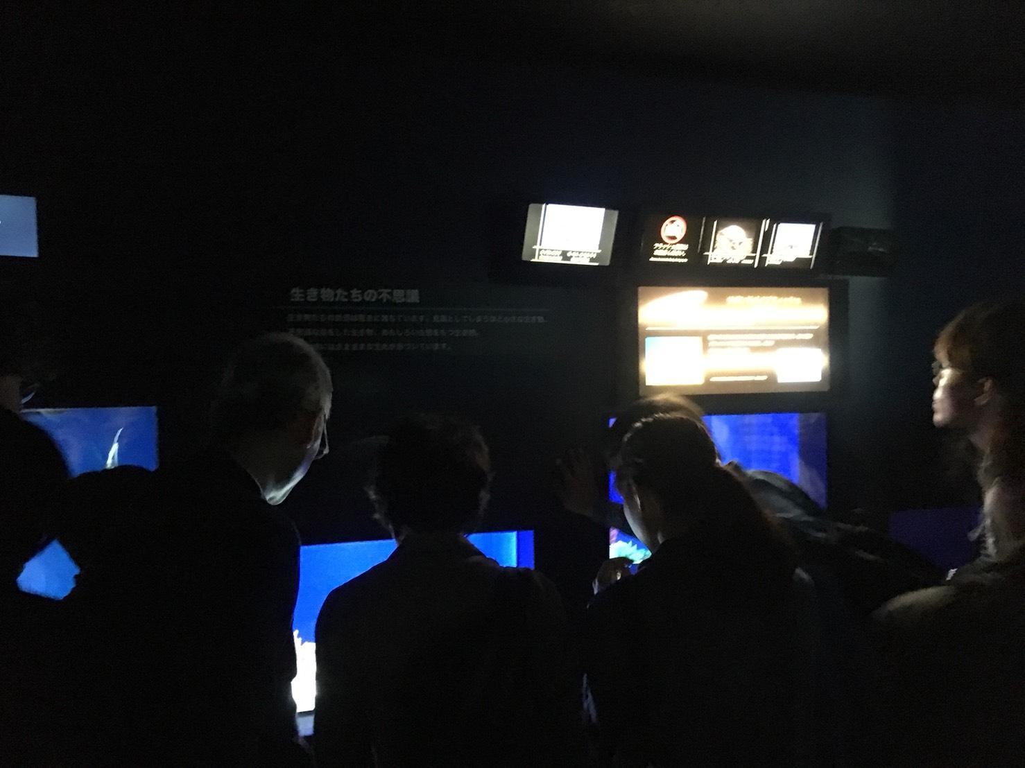 【池袋駅】「サンシャイン水族館」で癒されようよ!ほら早く!の水族館3