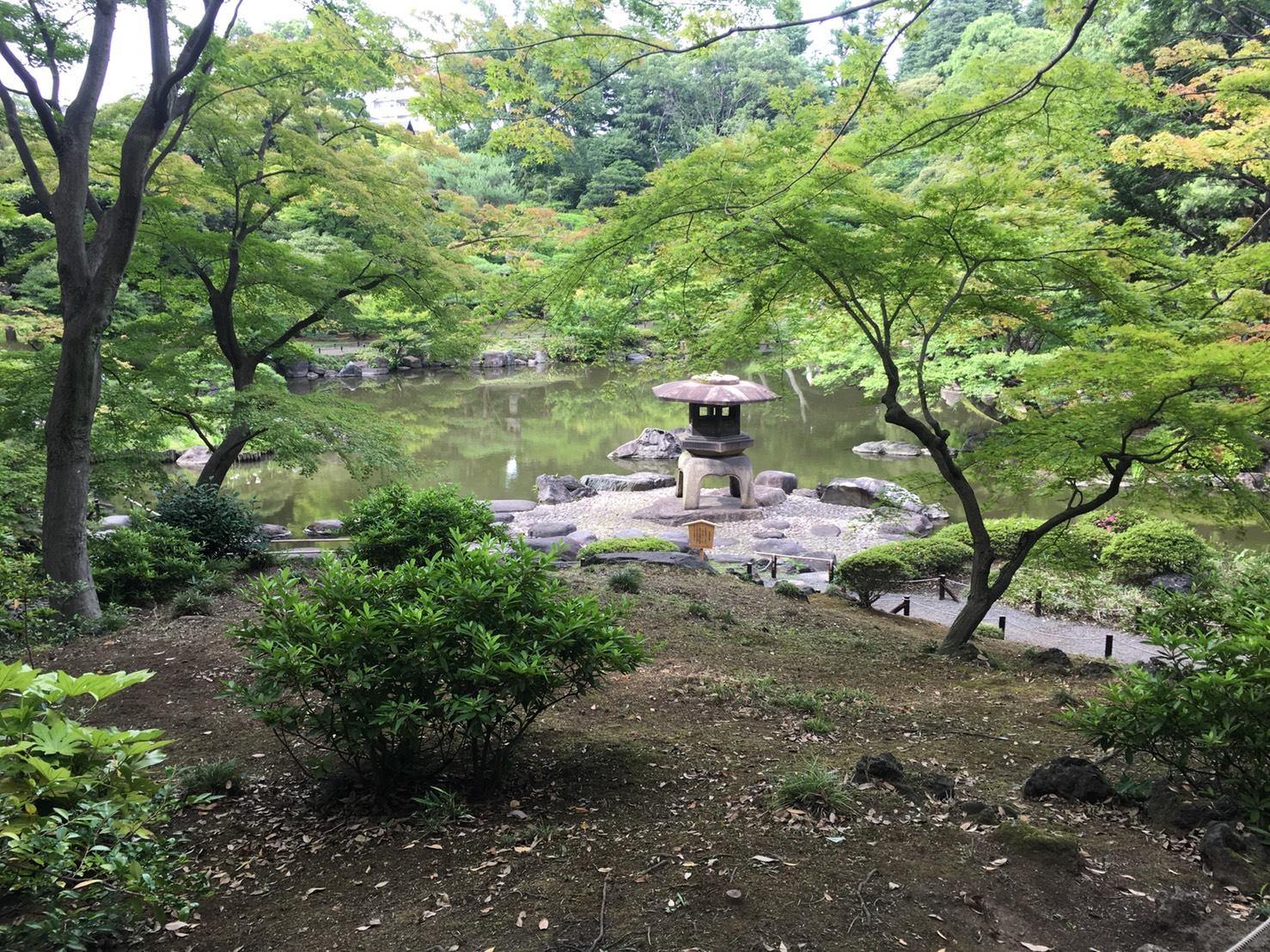 【上中里駅】バラが咲き誇る日英が混ざる庭園「旧古河庭園」の和庭園5