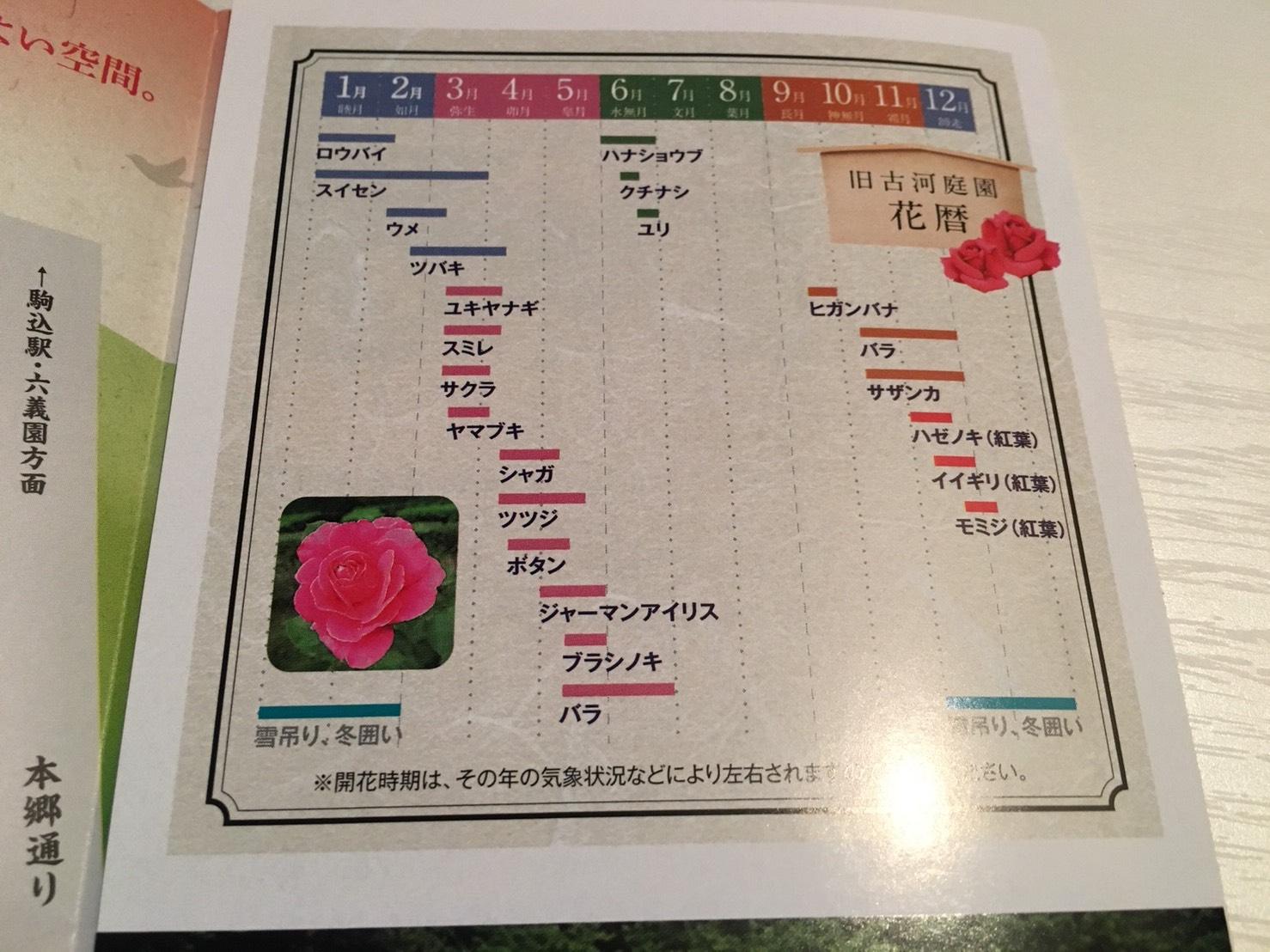 【上中里駅】バラが咲き誇る日英が混ざる庭園「旧古河庭園」の花暦