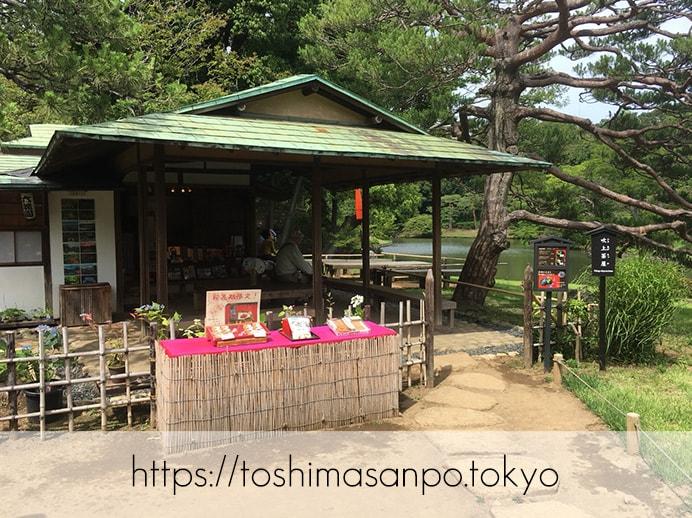 【駒込駅】歴史を学ぶいい日にしよう。和歌山市を模した江戸時代の庭園「六義園」で涼をとろう。の六義園の吹上茶屋1