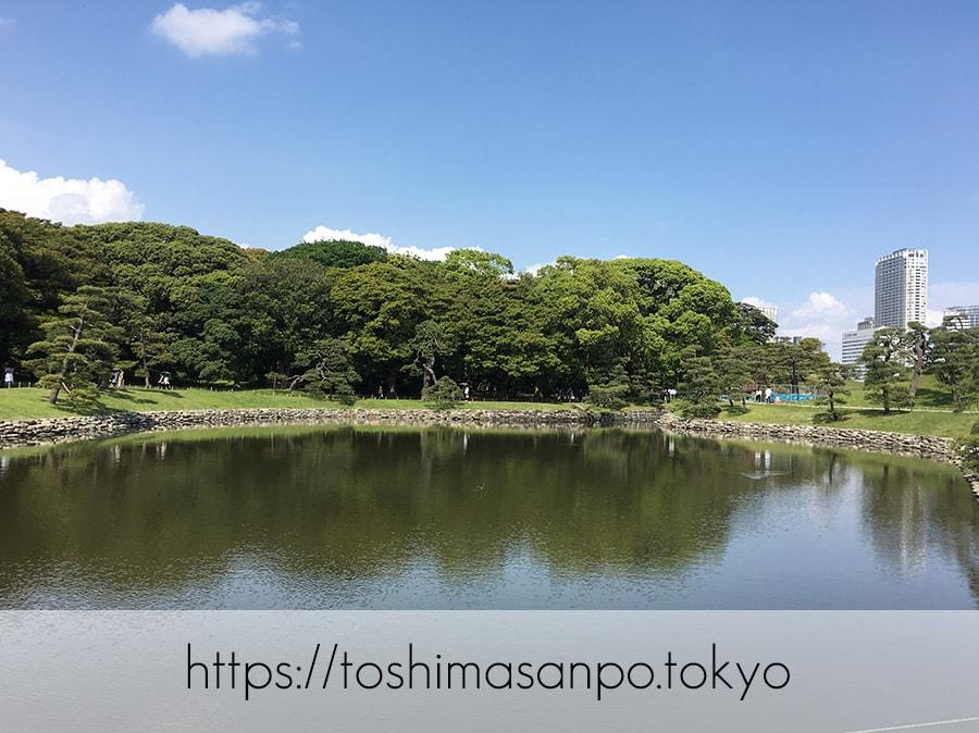 【汐留駅】水上バスにも乗れる!東京湾から繋がる江戸時代の広大な庭園「浜離宮恩賜庭園」の風情。の浜離宮恩賜庭園のお伝い橋からの景色