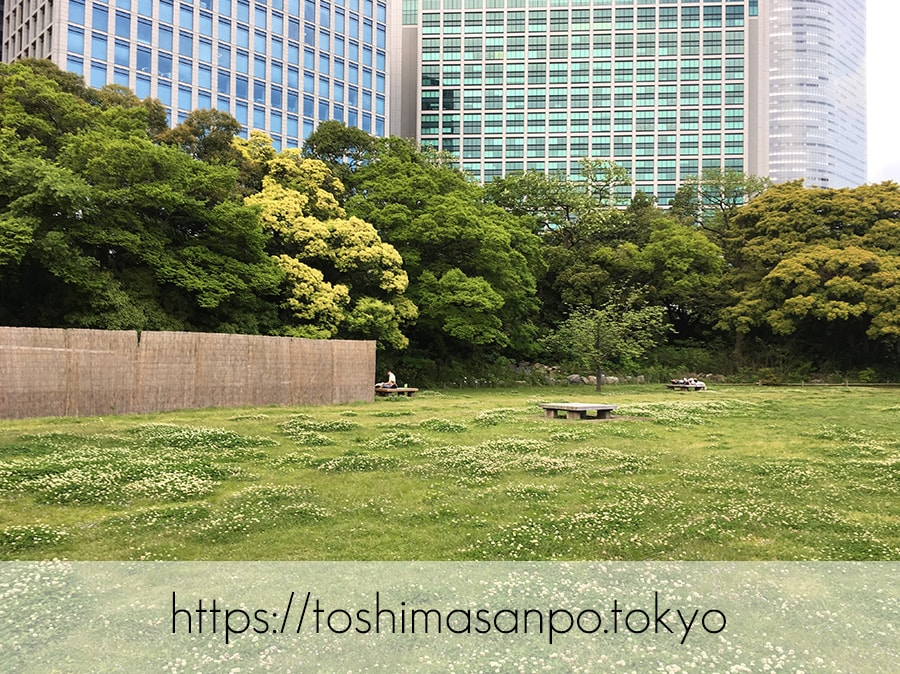 【汐留駅】水上バスにも乗れる!東京湾から繋がる江戸時代の広大な庭園「浜離宮恩賜庭園」の風情。の浜離宮恩賜庭園の野外卓広場1