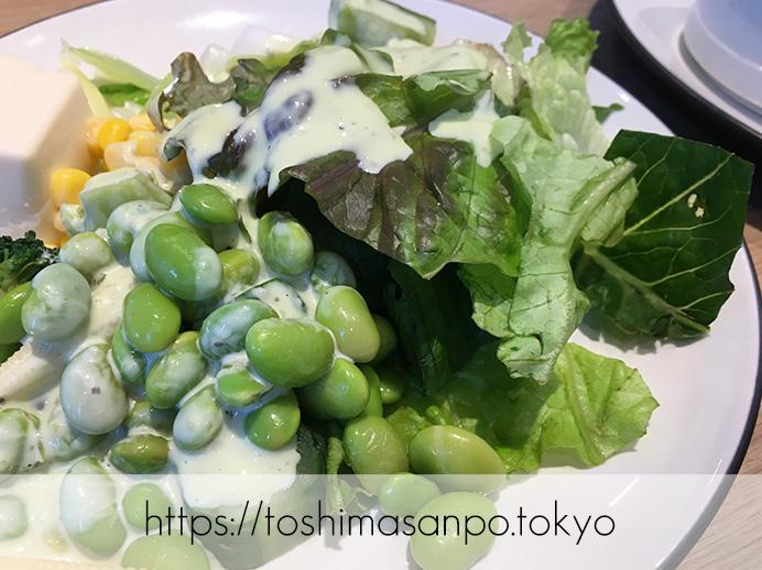 【大塚駅】新鮮野菜やデリサラダが最高。世界5ヶ国で愛されるビュッフェ「シズラー(Sizzler)」のビュッフェ4